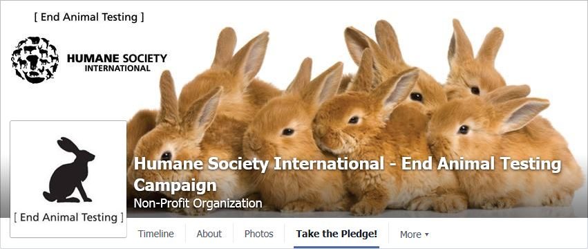 Humane Society International - End Animal Testing Campaign