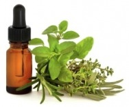 organic essential oil & healing plants